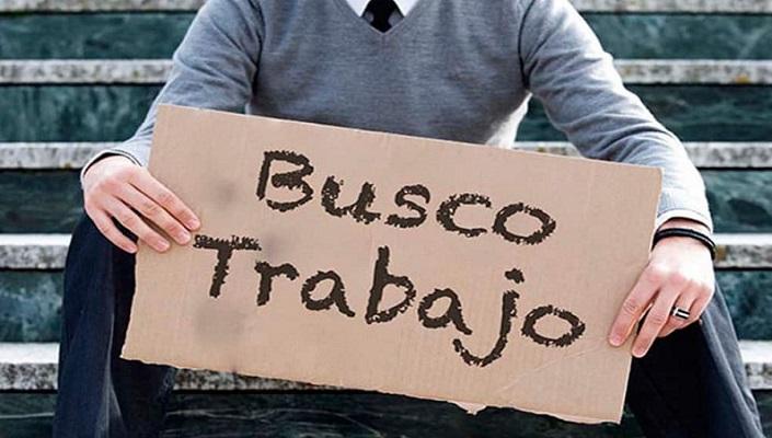 Pide ONG al gobierno federal establecer seguro de desempleo por tres meses