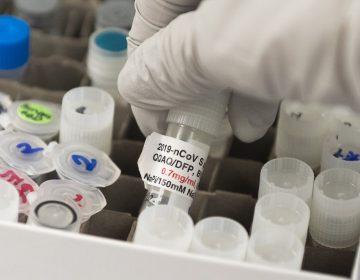 """China afirma que su vacuna contra el coronavirus será un """"bien público mundial"""""""