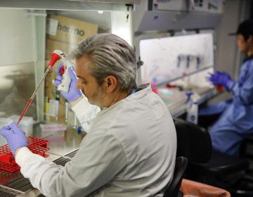 Universidad de Oxford incluirá a niños y ancianos en sus ensayos de vacuna contra el coronavirus
