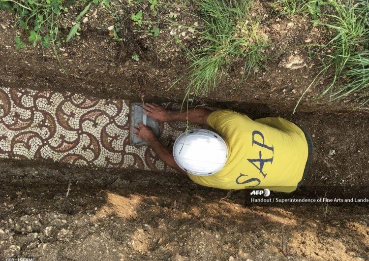 Arqueólogos descubren antiguos mosaicos romanos en viñedos de Italia