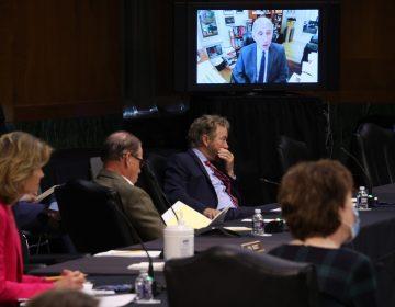 Epidemiólogo de la Casa Blanca advierte sobre las consecuencias de un desconfinamiento prematuro