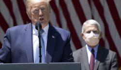 Principal epidemiólogo de EU contradice a Trump y dice no…