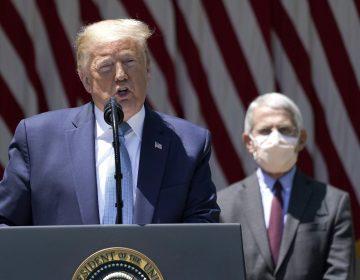 Principal epidemiólogo de EU contradice a Trump y dice no a la hidroxicloroquina contra el COVID-19