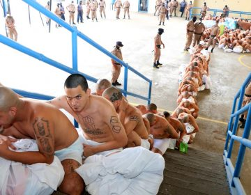 Maras Salvatrucha pactan tregua en cárceles tras ser mezclados con otros pandilleros