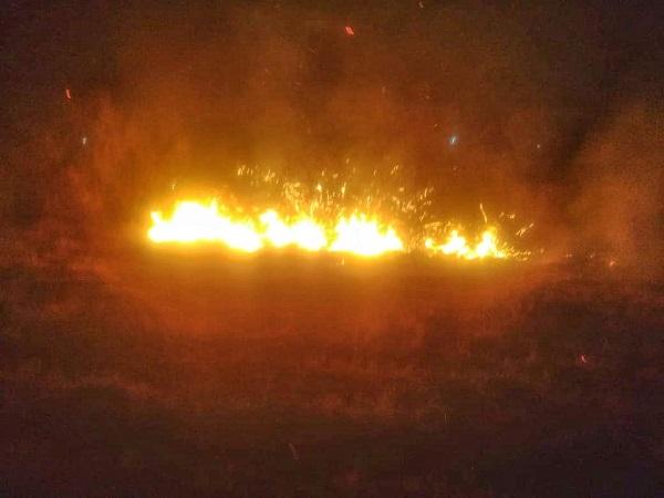 Se han registrado más de 600 incendios en Jesús María en 2020
