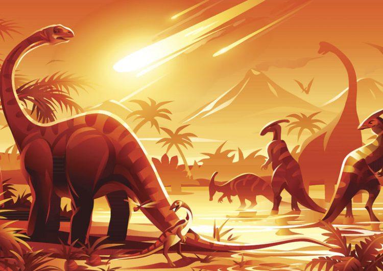 ¿Cuál será la especie dominante si los humanos nos extinguimos?