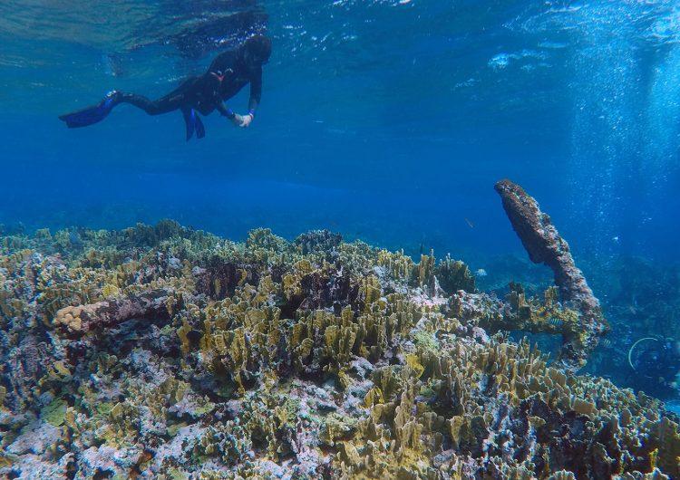 Arqueólogos mexicanos localizan en Quintana Roo vestigios de un naufragio de más de 200 años