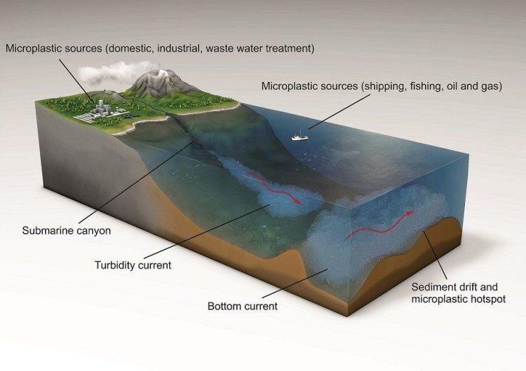 Científicos hallan el nivel más alto de microplásticos en el fondo marino