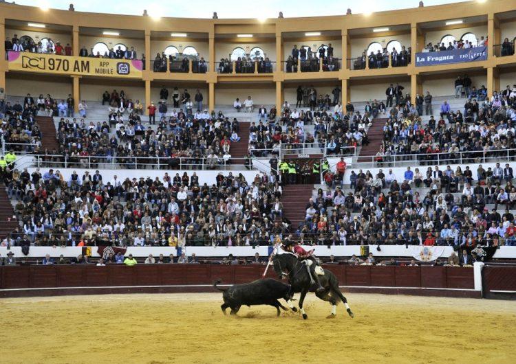 Bogotá prohibirá el maltrato o la muerte del toros en corridas