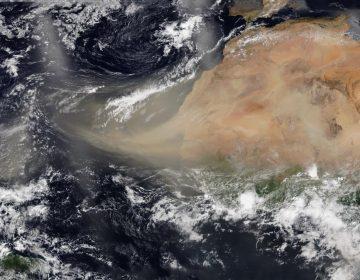 Polvo del Sáhara tendrá máxima concentración este viernes