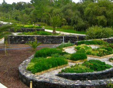 Puebla analiza renombrar el Parque Metropolitano por Amy Camacho
