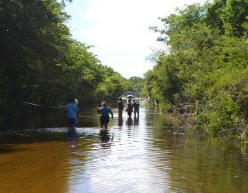 Evacúan familias campechanas por inundación