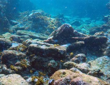 'Descubrí un barco hundido de 200 años de antigüedad frente a las costas de México'