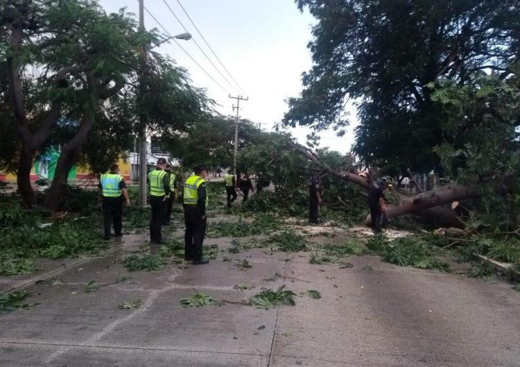 Deja caos lluvia este domingo en Mérida