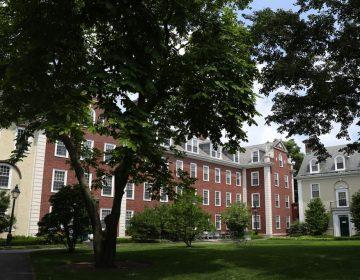 Estudiantes nuevos con curso en línea no podrán ingresar a Estados Unidos: ICE