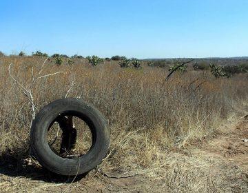 Desarrollo de viviendas y tiraderos de escombros, amenazas al Bosque de Cobos