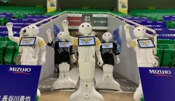 Equipo de béisbol japonés usará a robots como espectadores para…