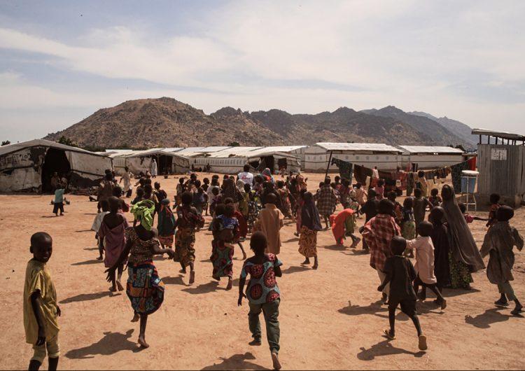 Asesinan a cinco colaboradores humanitarios en Nigeria; MSF condena el crimen