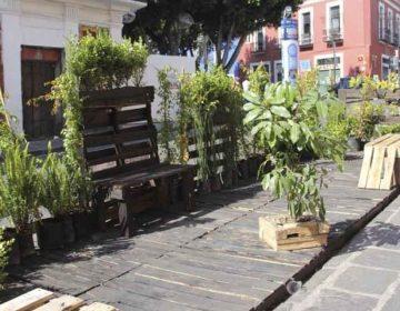 Parklets en el Centro Histórico poblano podrían ser ocupados por delincuentes