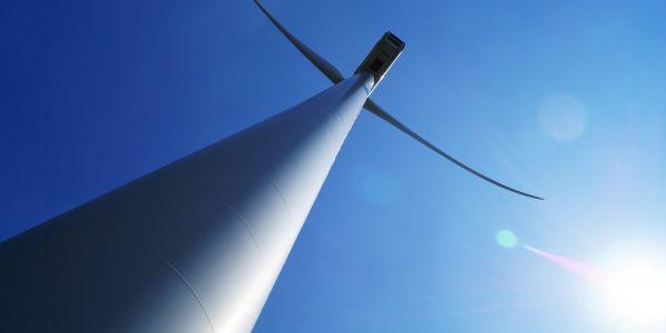 Planea Bonilla mover dos parques eólicos de BC