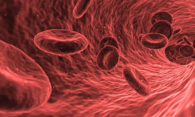 Aprueba COFEPRIS uso de plasma en pacientes graves de Covid-19 en Aguascalientes