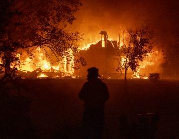 California decreta estado de emergencia por ola de incendios; miles son evacuados