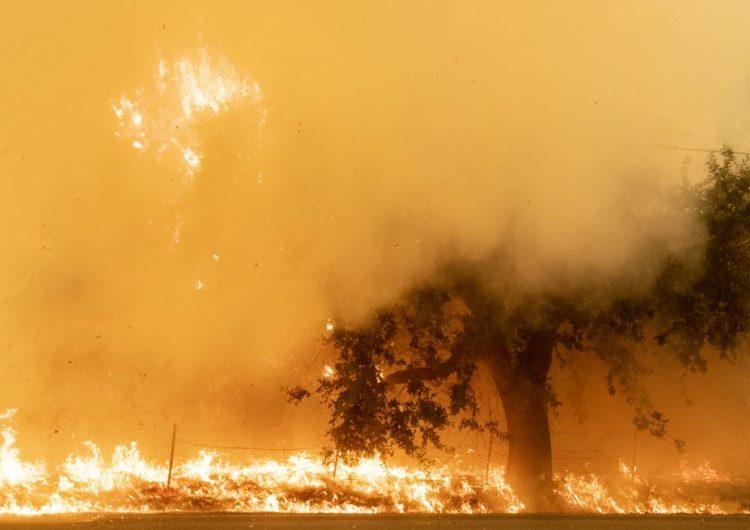 En fotos: Los incendios en California avanzan rápidamente mientras continúan las evacuaciones