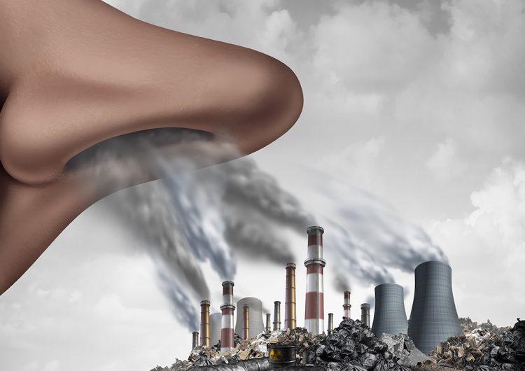 Opinión | Aire y salud: ¿falacia o realidad?