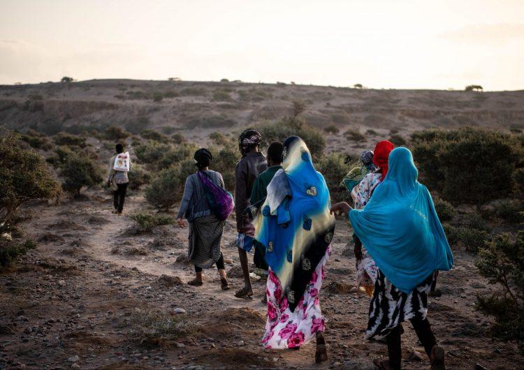 Más de 1,200 migrantes murieron en la primera mitad de 2020 pese a las restricciones por la pandemia