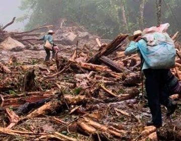 Hay viviendas, carreteras y caminos destruidos en la Sierra Norte de Puebla