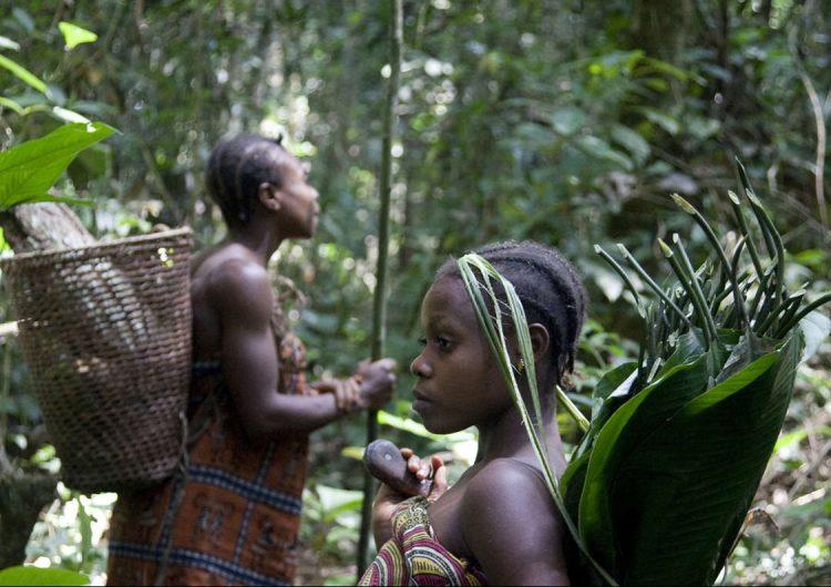 Opinión | Los turistas podían, los indígenas no pueden