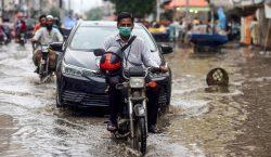 Nueva plataforma analiza factores ambientales y meteorológicos asociados con la…
