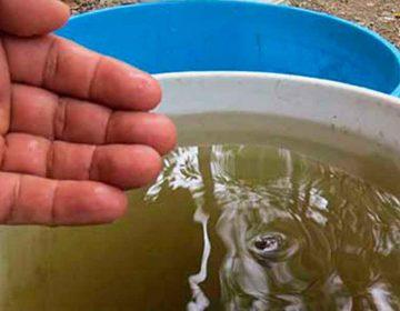 Poblanos reportan que agua les llega con heces fecales
