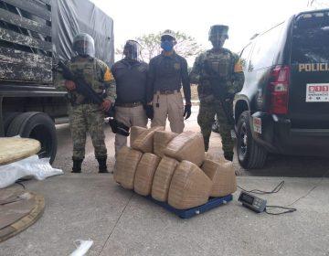 Incauta el Ejército marihuana en empresas de paquetería
