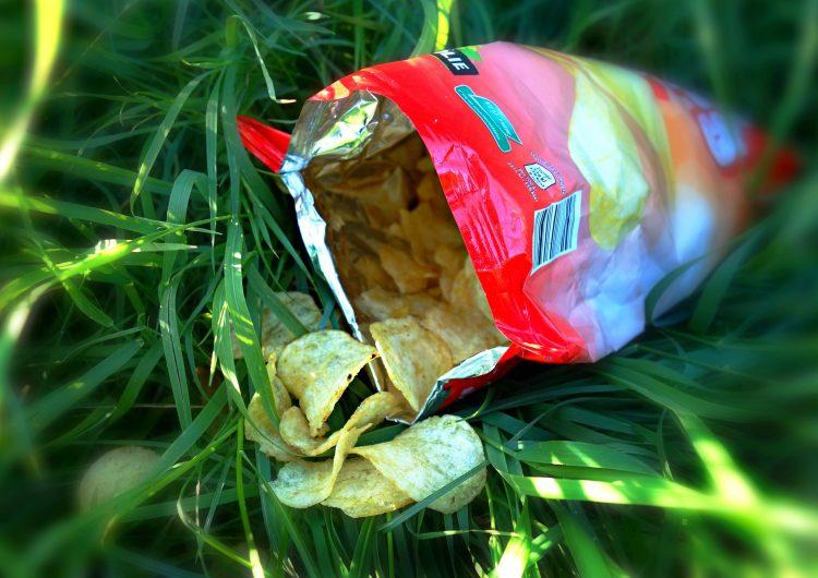 No quieren prohibir venta de comida chatarra en Mérida