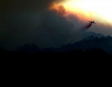 Roban la cartera de un bombero y le vacían cuenta mientras combatía incendio en California