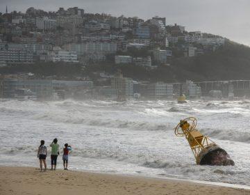 Un carguero se hunde cerca de Japón con 43 personas y 5,800 vacas