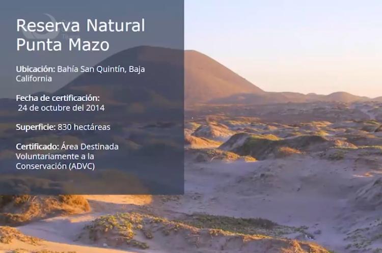 Existen más de mil sitios arqueológicos en BC: arqueóloga del INAH
