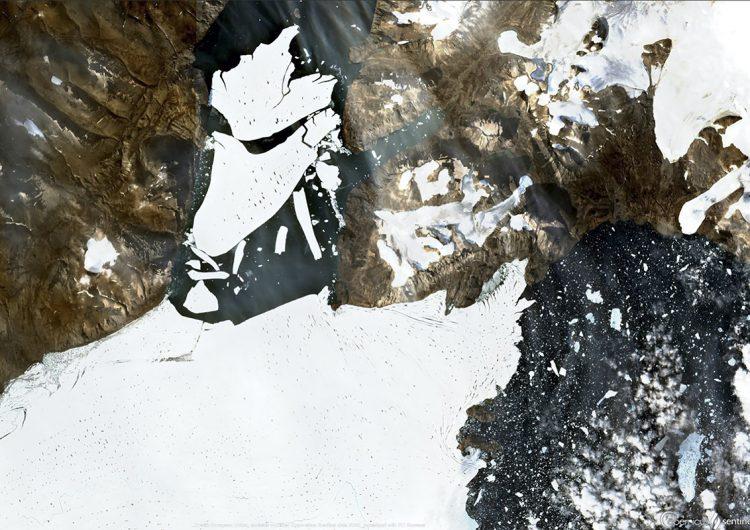 El glaciar más grande del Ártico se fractura por el calentamiento climático; pierde 113 km2 de hielo