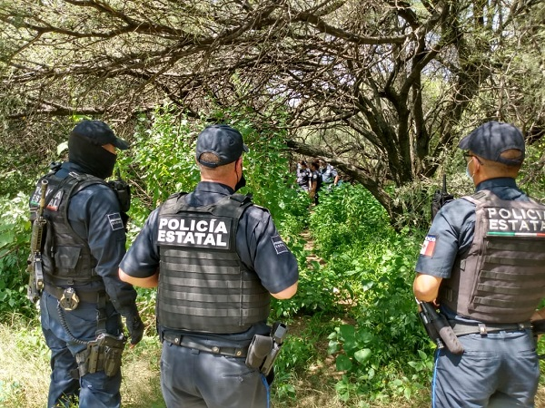 Hombre se suicida en el parque La Pona