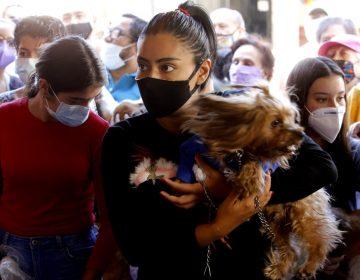 México suma 5,300 casos confirmados de COVID-19 y 370 nuevas defunciones