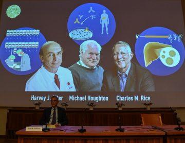 Otorgan el Nobel de Medicina a tres científicos por el descubrimiento del virus de la hepatitis C
