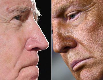¿Trump o Biden? Los pronósticos de las encuestas a una semana de la elección