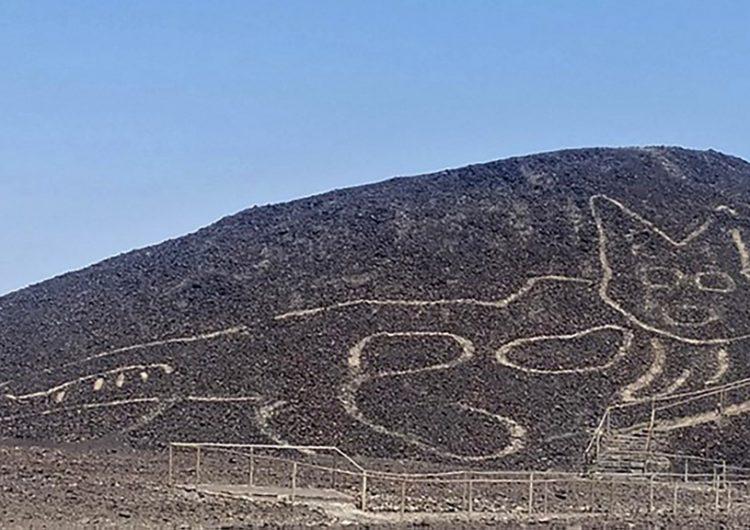 """Descubren un enorme felino """"a punto de desaparecer"""" trazado en Nasca, Perú"""