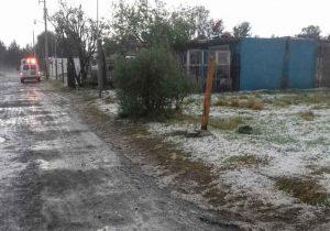 En riesgo por heladas 8 mil hectáreas de cultivo