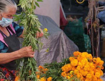Preocupados productores de flor de Atlixco en Día de Muertos ante bajas ventas