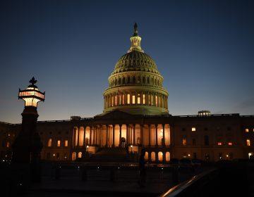 Congreso sin grandes cambios: Demócratas retienen Cámara Baja y disputan escaños en el Senado