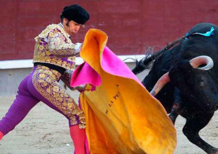 Analizan prohibir  corridas de toros en Puebla
