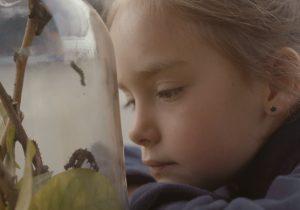 Infancia y naturaleza: la importancia de que la niñez crezca cerca de ambientes naturales