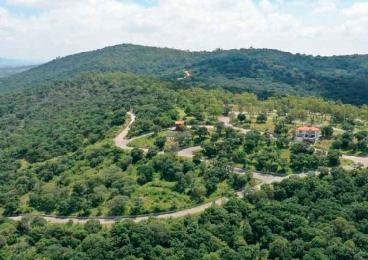 Flor del Bosque será declarada reserva ecológica